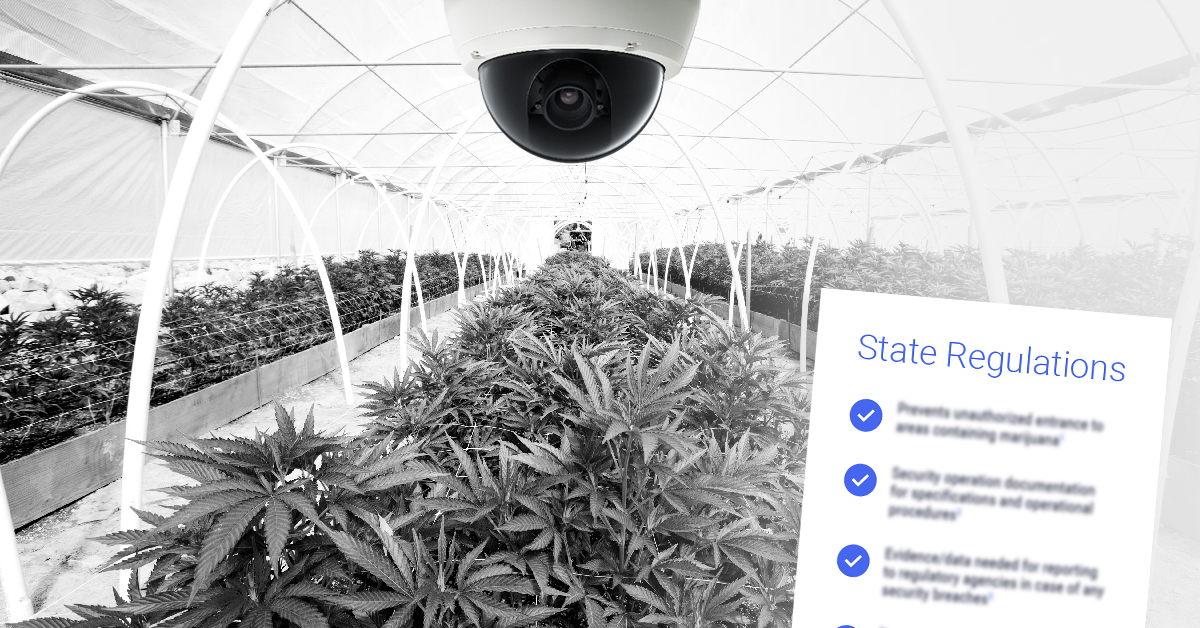 An All-in-One Solution for Meeting Your State's Strict Cannabis Security Regulations
